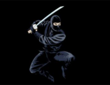 Shinobi o guerreros de las sombras